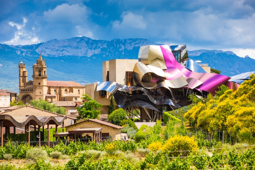 A vineyard designed by Frank Gehry.
